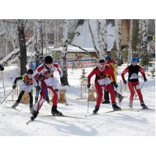 ЧиП г. Тюмени по спортивному ориентированию